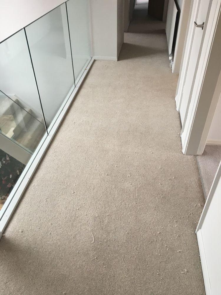 Lee Porter Carpets And Flooring 100 Feedback Carpet
