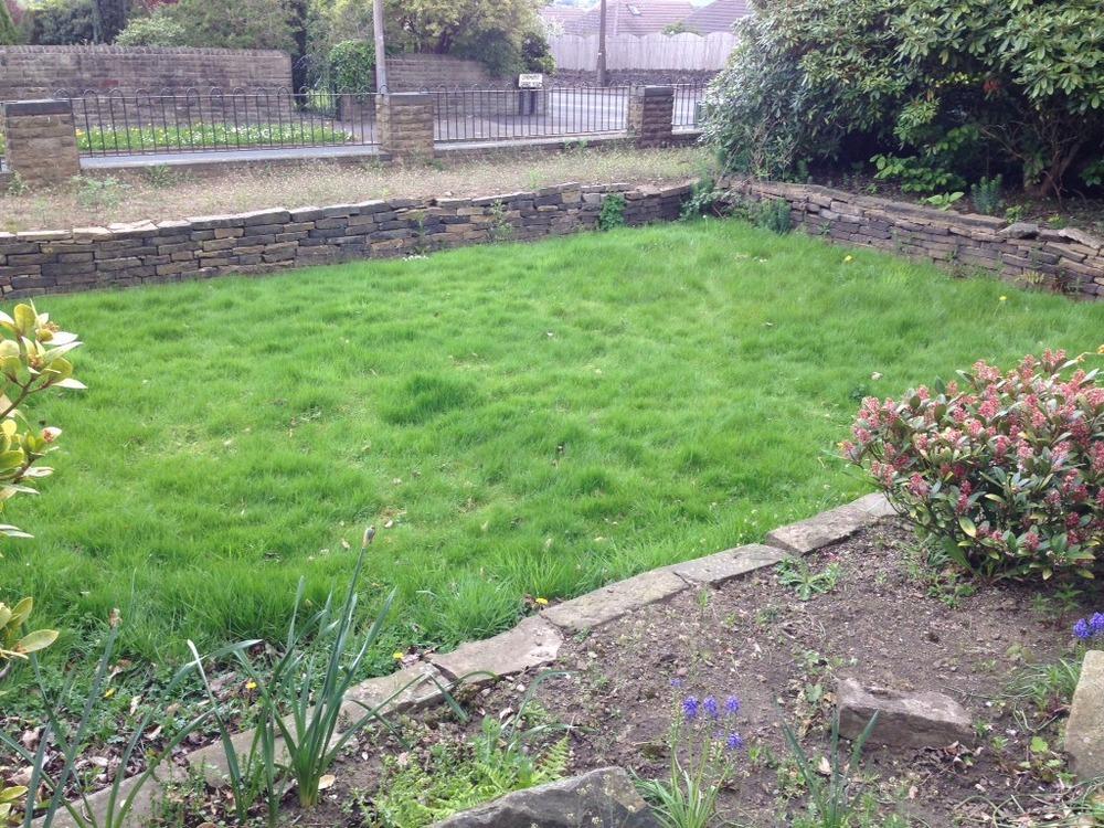 Large Overgrown Garden Needs Cutting! - Landscape Gardening Job In Brighouse West Yorkshire ...