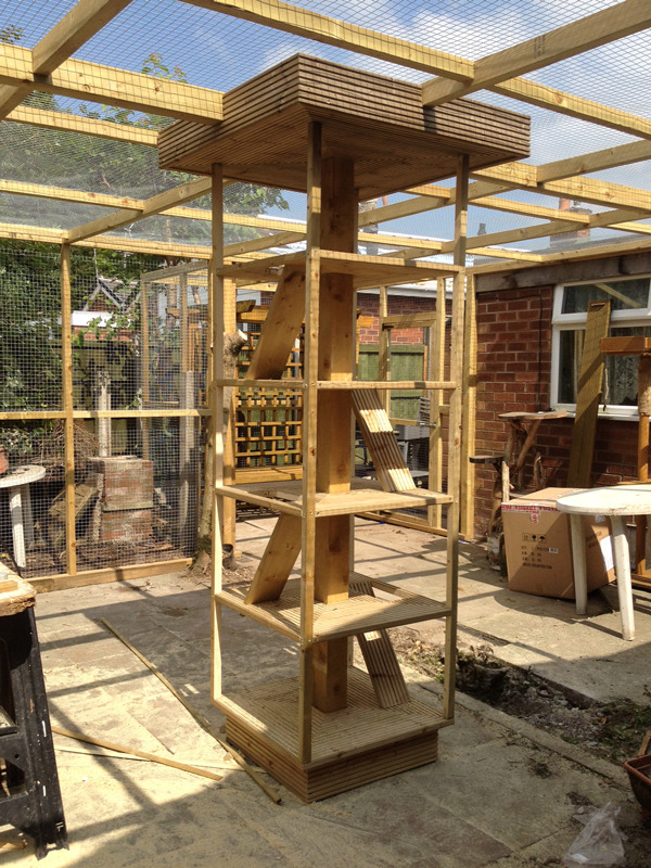 Outside Cat Enclosure Play Area Carpentry Job In Hackney