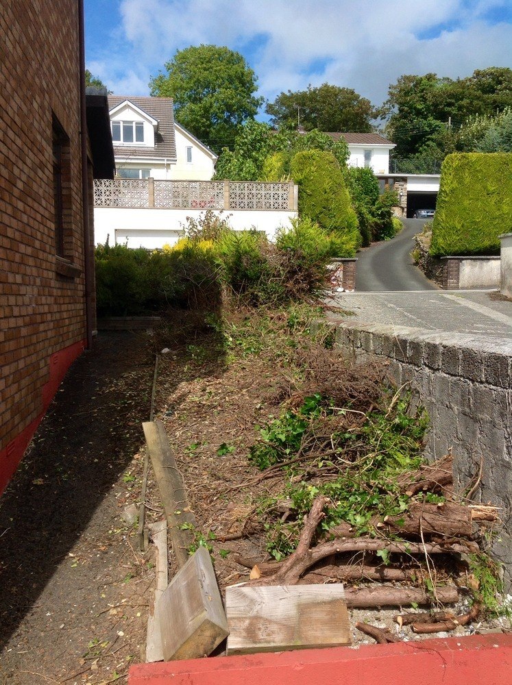 20sqm requiring ground clearance to bare soil for Gardening jobs cornwall