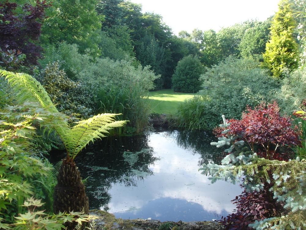 Wilde Gardens: 100% Feedback, Landscape Gardener in ...