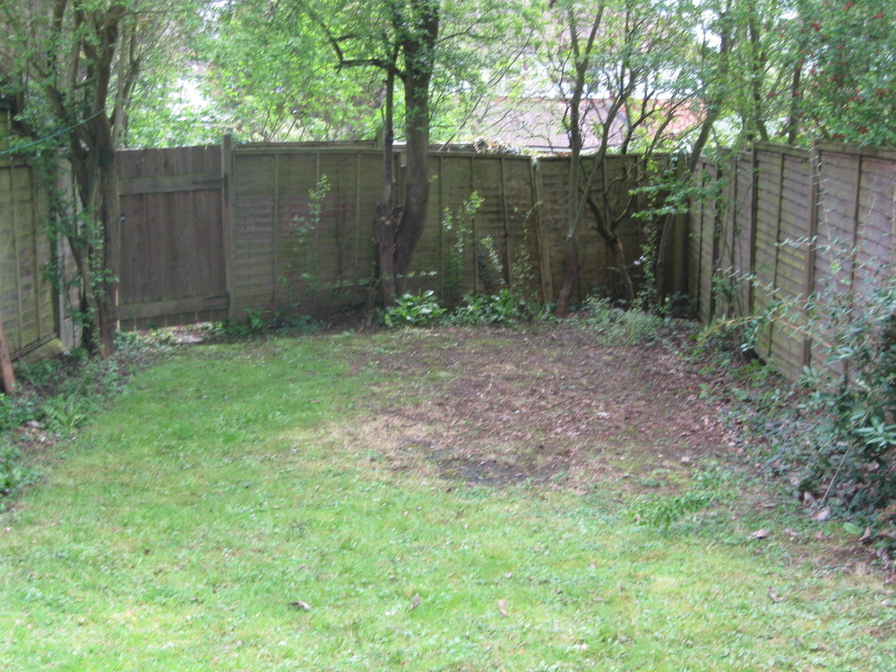 Tree Removal From Private Garden - Tree Surgery Job In Harpenden Hertfordshire - MyBuilder