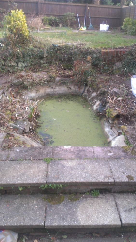 Concrete garden pond removal demolition clearing job for Concrete garden pond