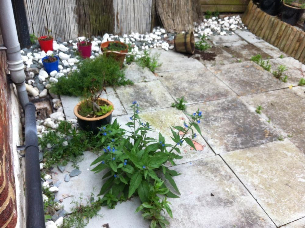 Courtyard Garden Renovation - Landscape Gardening Job In Hitchin Hertfordshire - MyBuilder