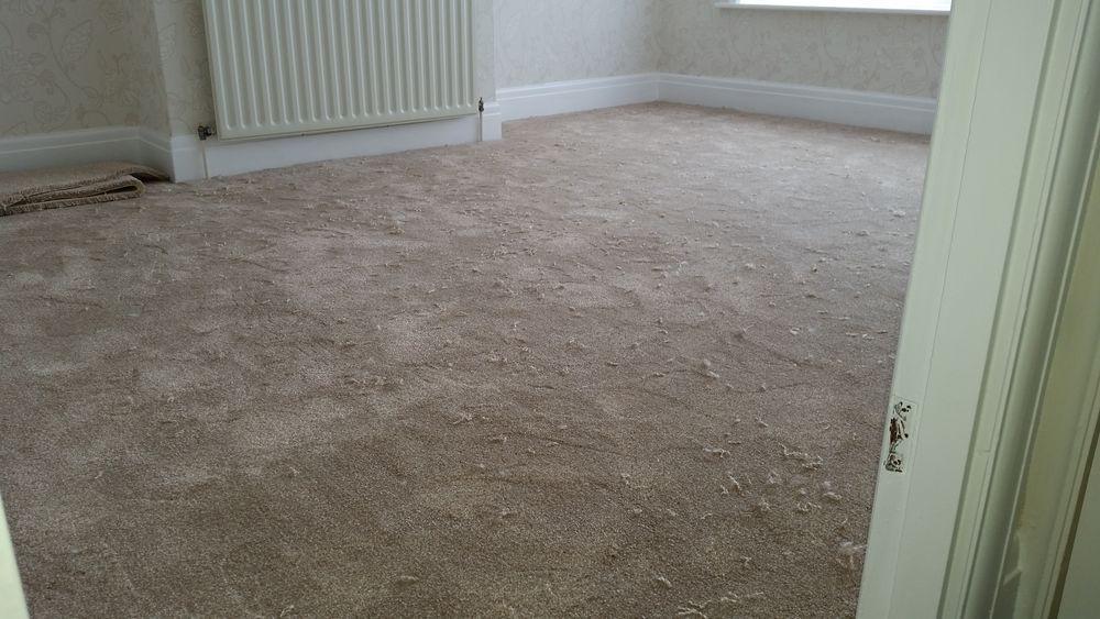 Paul Allen Carpets And Flooring 100 Feedback Carpet