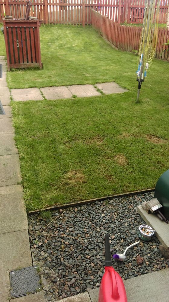 Slabbing back garden landscape gardening job in glasgow photographs workwithnaturefo