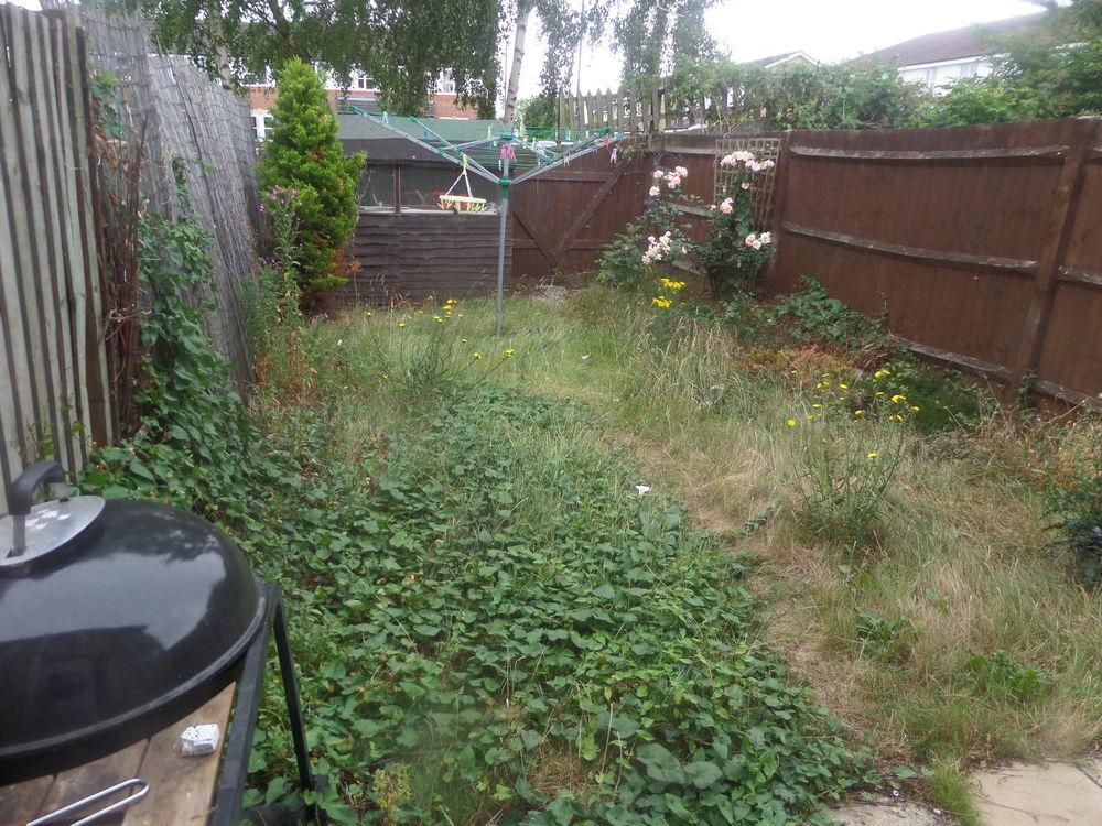 Approx 40ft garden tidy returf design ideas landscape for Garden design internship