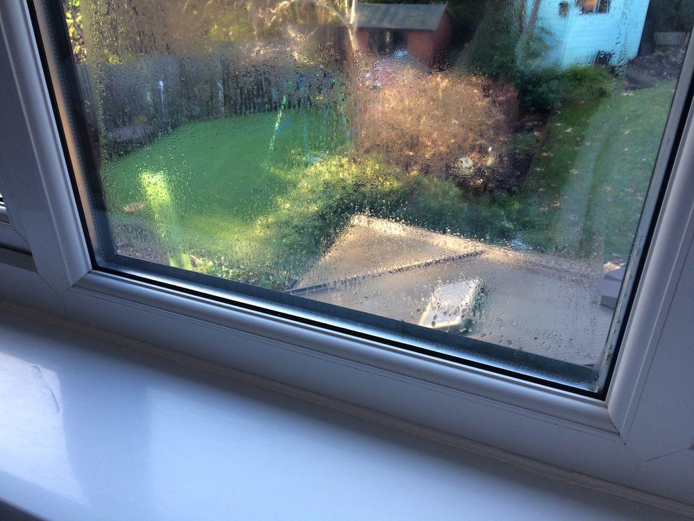 Replace And Re Seal Blown Window Pane Windows Amp Doors