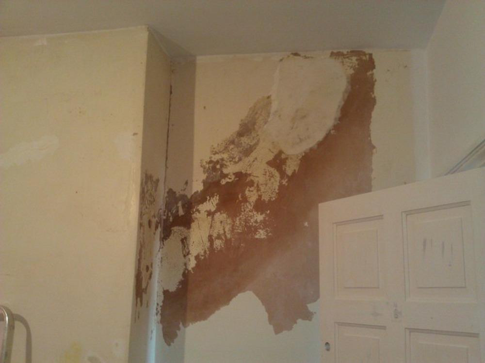 Damp Walls In Bedroom Memsaheb Net