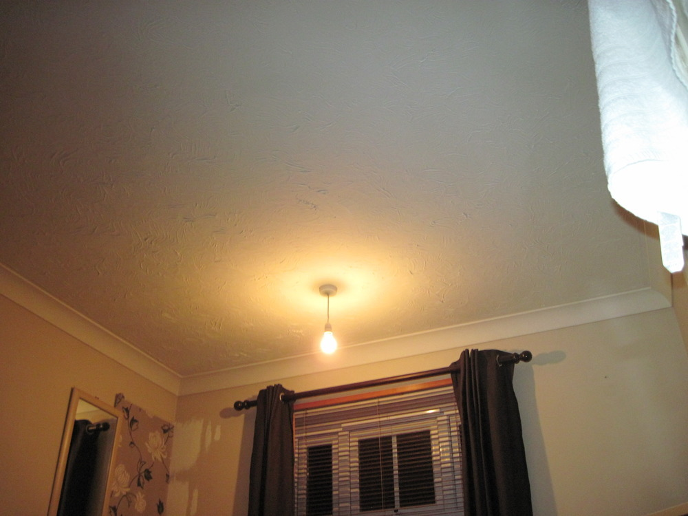 Strip Artex Non Asbestos And Plaster Ceiling