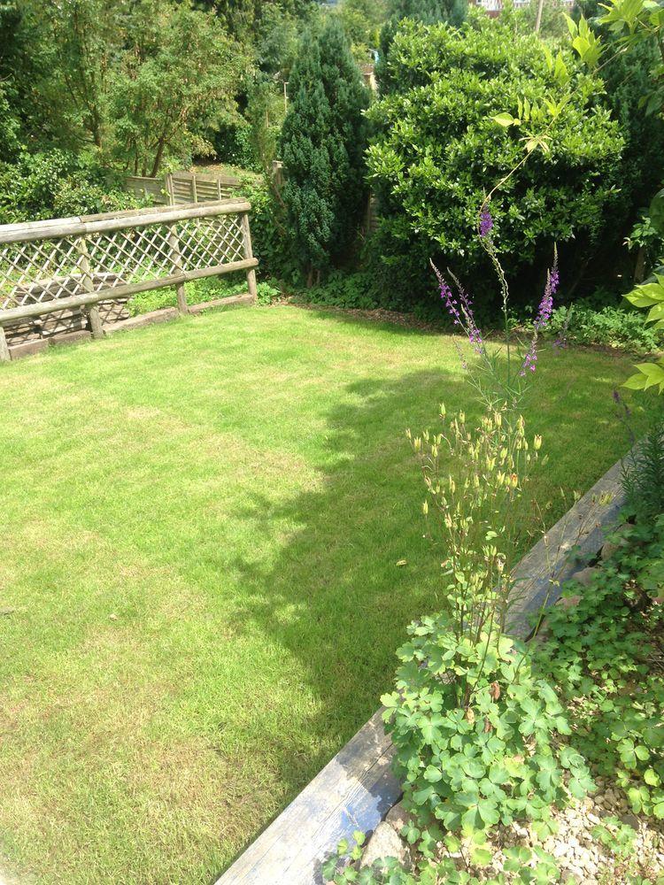 Homan Horticulture 89 Feedback Landscape Gardener