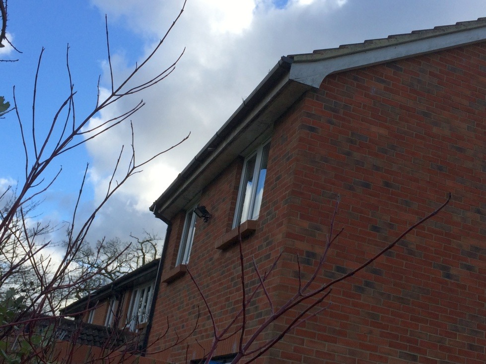 Gutters cleaning with painting fascia, soffit, cladding - Fascias