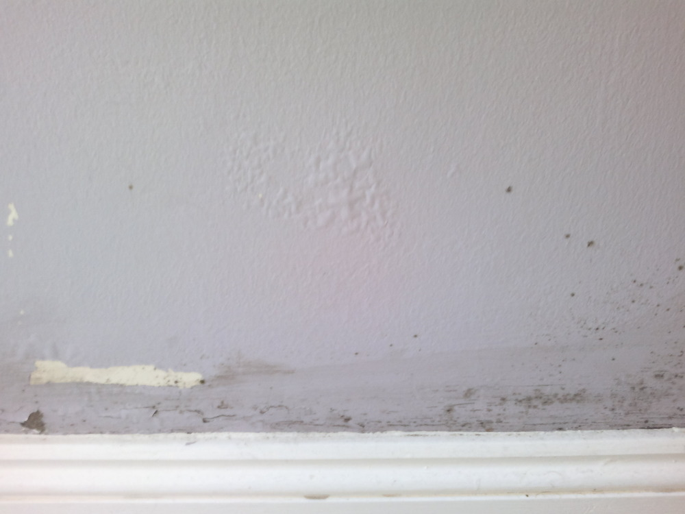 Damp On Bottom Of Exterior Wall Damp Proofing Job In Enfield Middlesex Mybuilder