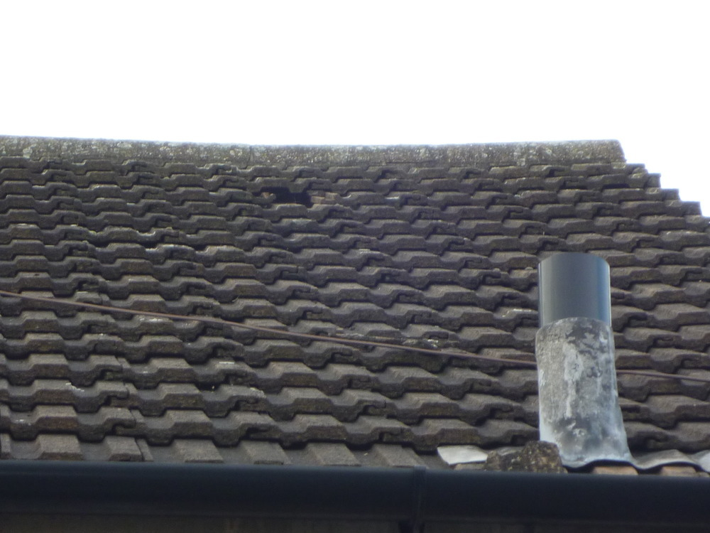 Replace A Concrete Roof Tile Roofing Job In Derby