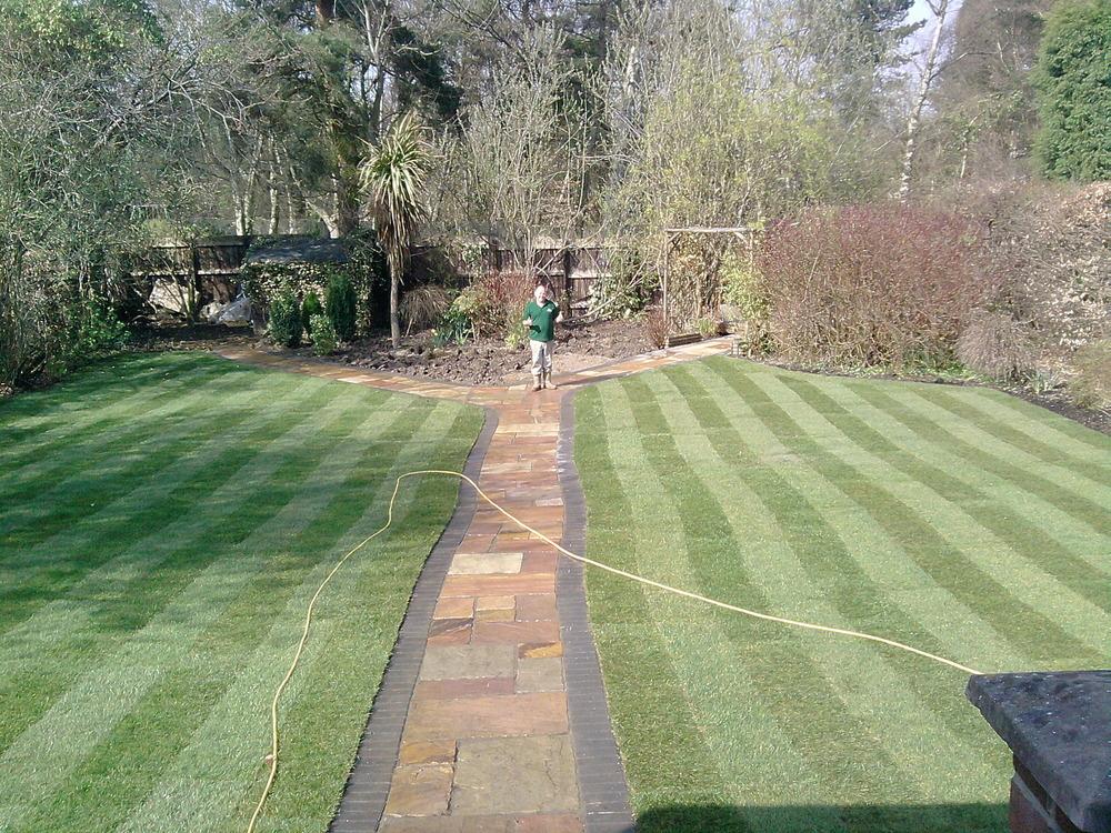 Shaped Driveway Landscaping : Hedley landscapes feedback landscape gardener