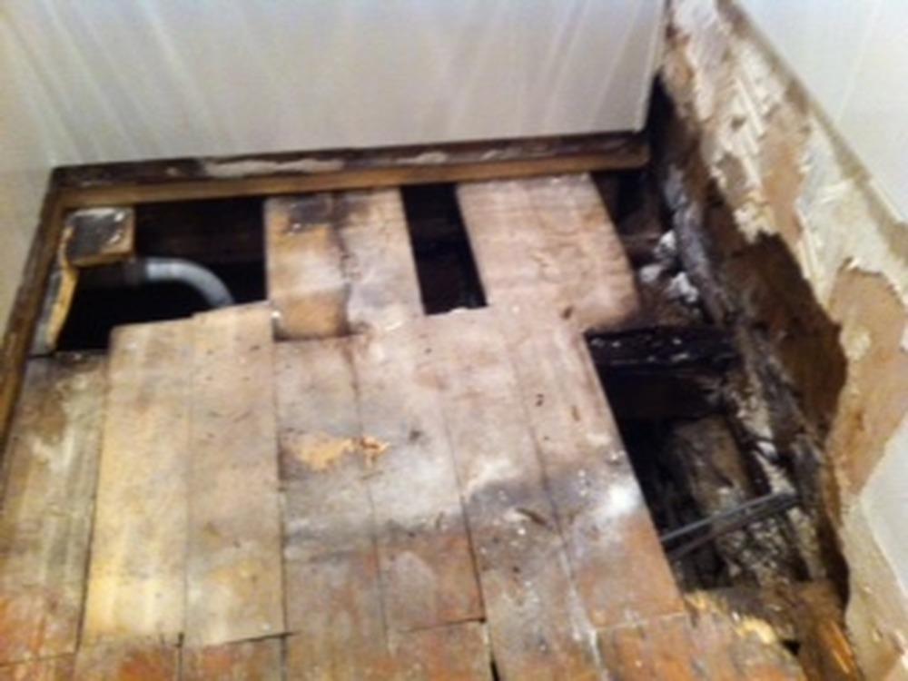 Replace 3 Floor Joists Ground Floor Flat Carpentry