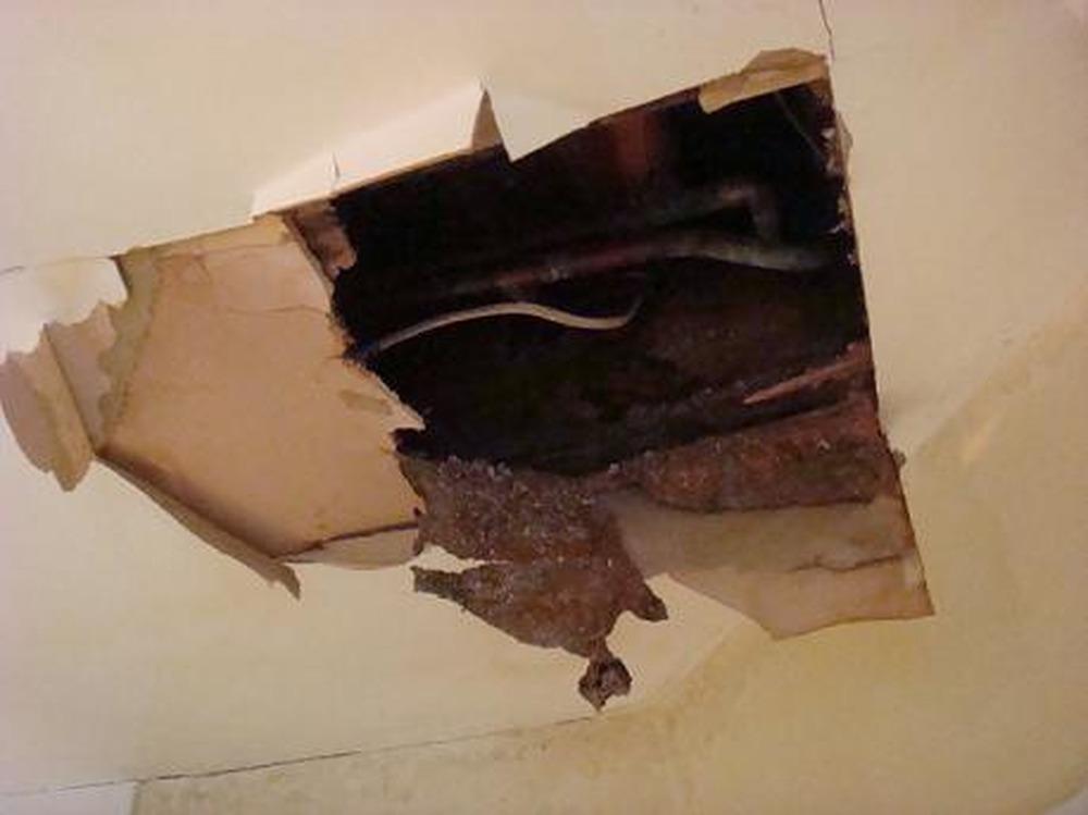 Inspiration Bathroom Ceiling Repair Design Decoration Of - Bathroom leak ceiling repair