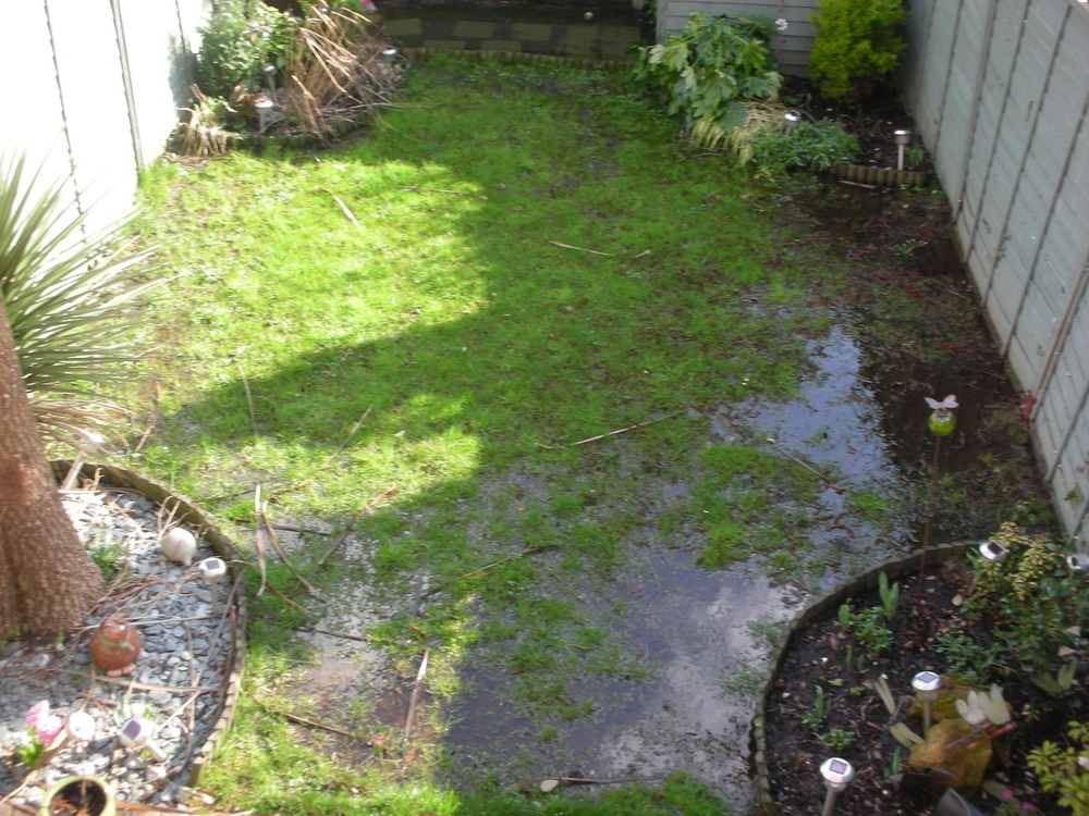 Garden drainage issues lots of standing water for Outdoor landscaping