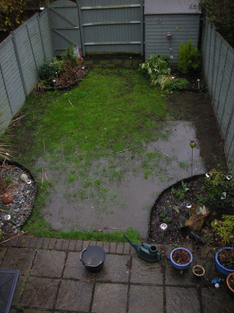 Garden drainage issues lots of standing water Landscape