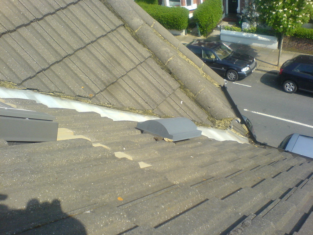 Bathroom vent through roof
