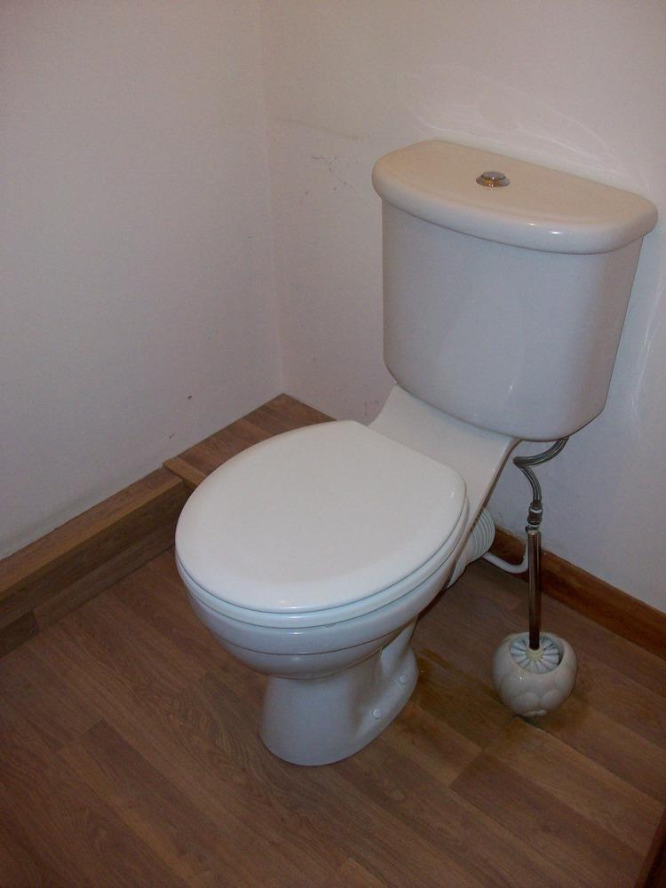 Tile Cloakroom Flr Splashback Replace Sink And Toilet