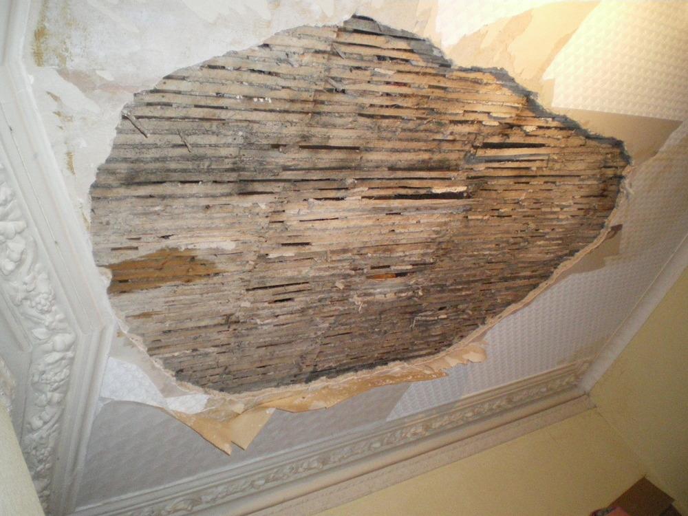 Repair of lath and plaster ceiling restoration refurbishment job in forest gate east london for Interior stucco ceiling repair