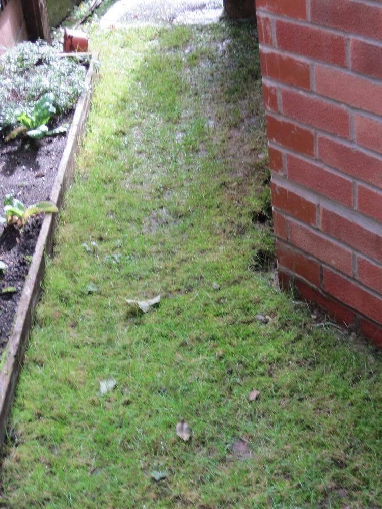 Extend A Back Garden Patio - Driveways Job In Bordon Hampshire - MyBuilder