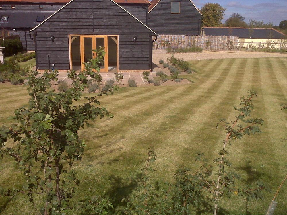 Landscape Garden Epping : Thomas james landscapes feedback landscape gardener