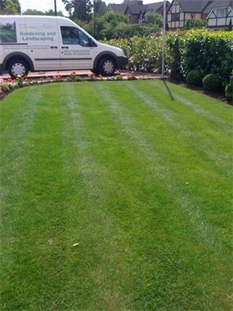Landscape Garden Epping : Thomas james landscapes feedback landscape gardener