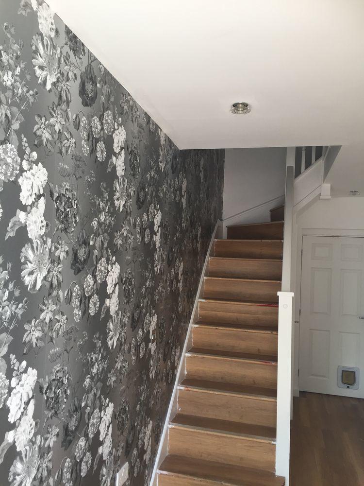 sg decorators 100 feedback painter decorator in. Black Bedroom Furniture Sets. Home Design Ideas