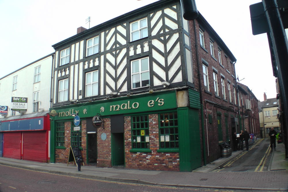 Image result for molly malone ashton