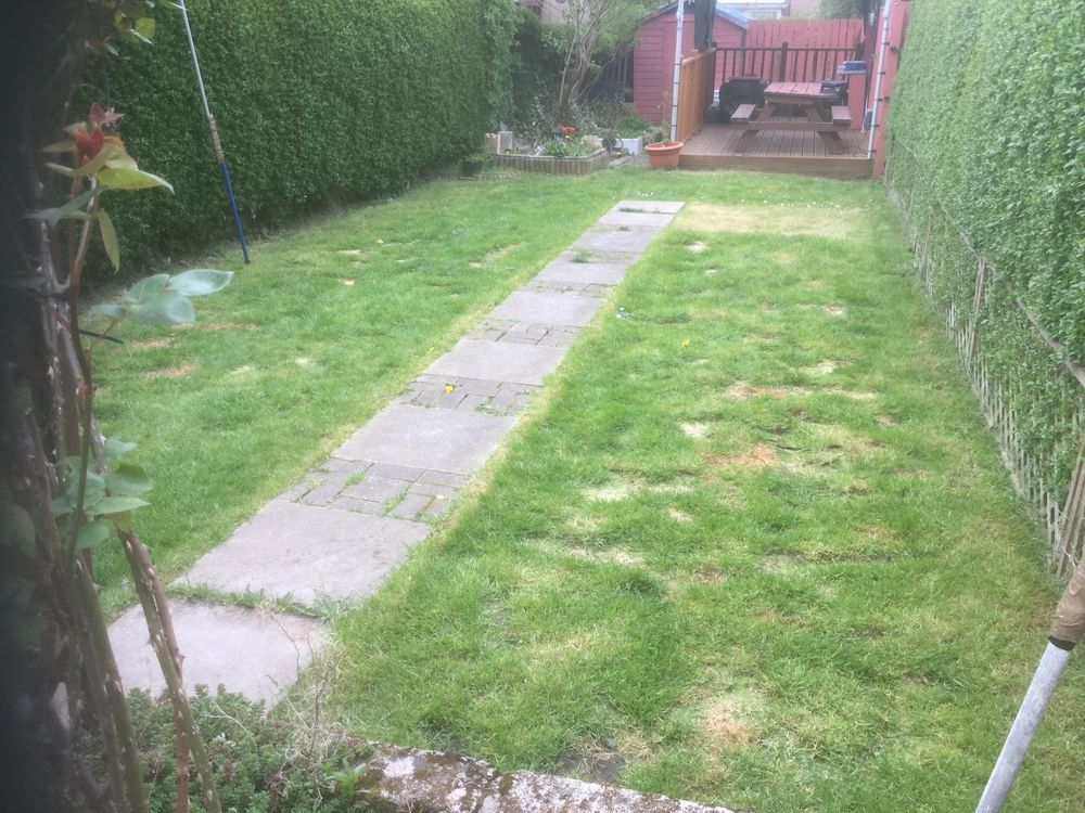Rear garden returfing and some slabbing laid ...