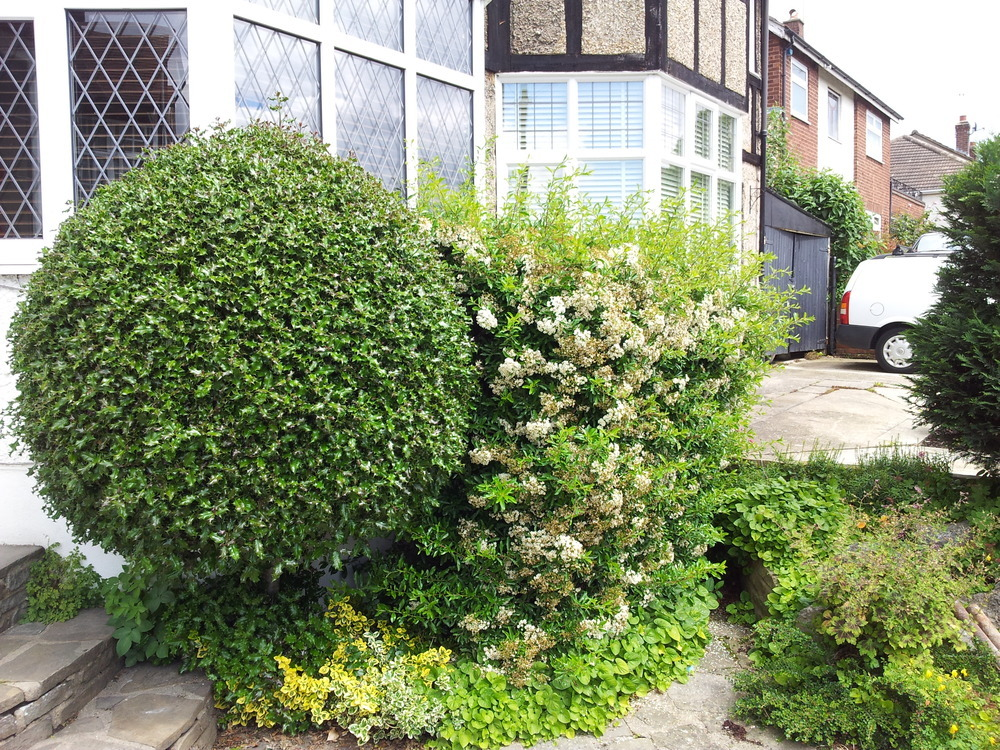 Tidy up front and Rear garden - Landscape Gardening job in Waltham Abbey Essex - MyBuilder