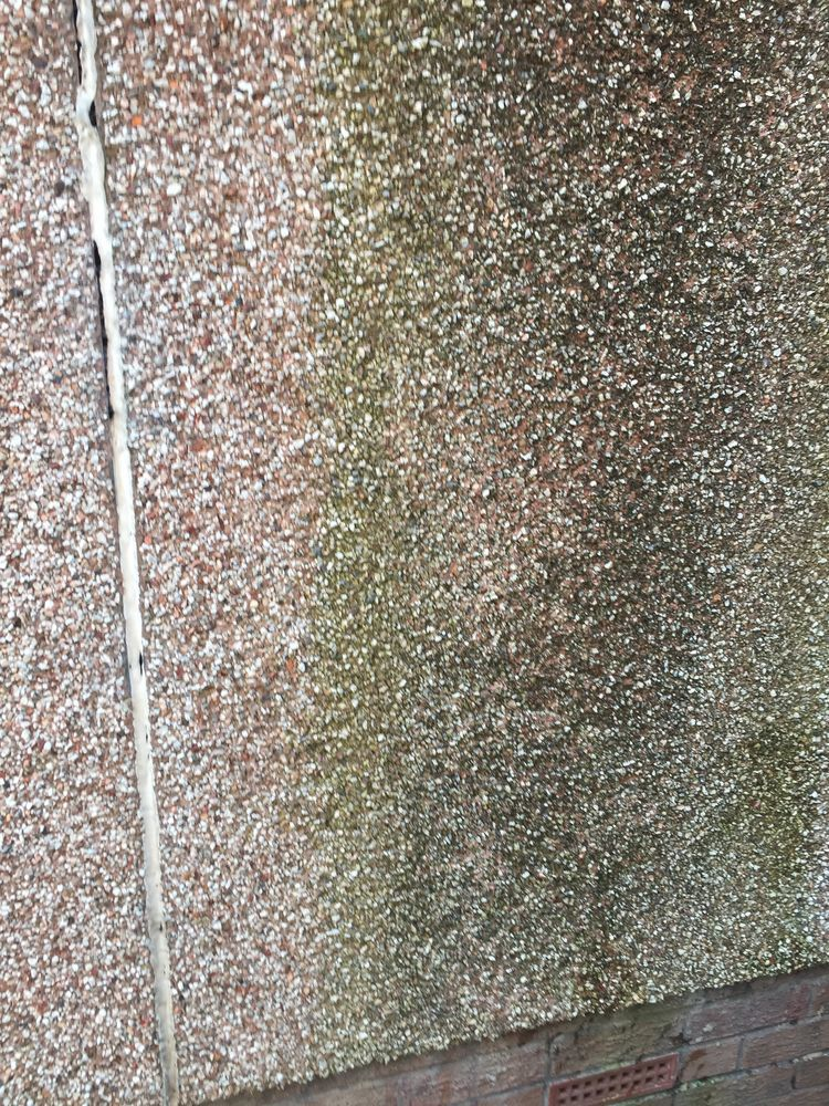 Cleaning Outside Roughcast