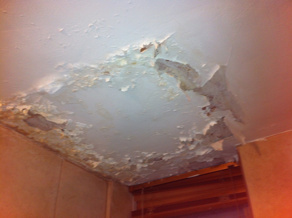 Bathroom Ceiling repair after leak Painting & Decorating job in